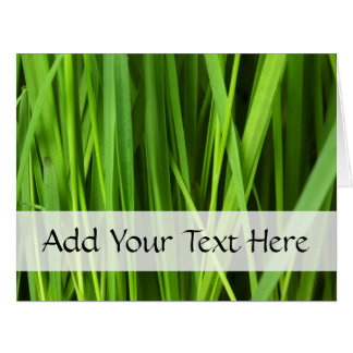 Botanical Close Up - Grass Leaves (Leaf) - Green Card