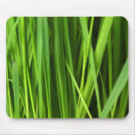 Botanical Close Up - Grass Leaves (Leaf) - Green Mouse Pad
