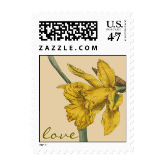 Botanical Daffodil Flower Love Postage