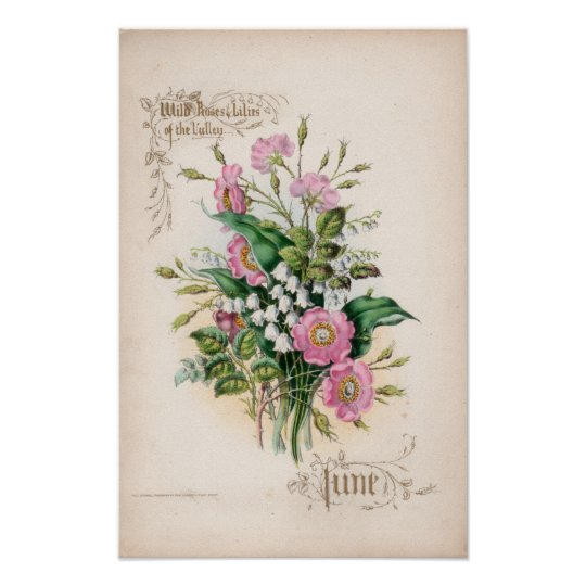 Botanical Engravings, June Poster