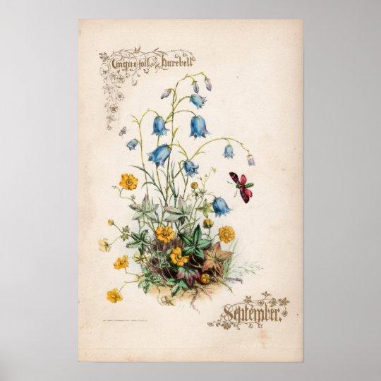 Botanical Engravings, September Poster