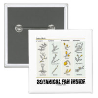 Botanical Fan Inside (Types Of Buds) 2 Inch Square Button