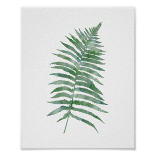 Botanical Fern Leaf Green Watercolor Nature Plant Poster at Zazzle