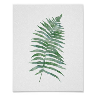 Botanical Fern Leaf Green Watercolor Nature Plant Poster
