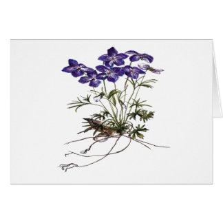 Botanical flower invitation Garden party Greeting Card