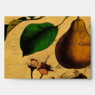 Botanical Fruit Envelope
