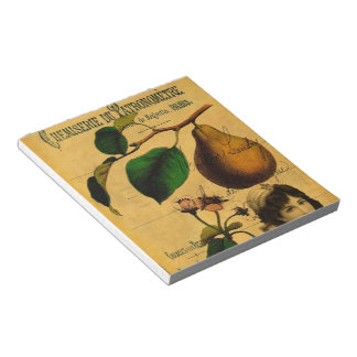 Botanical Fruit Notepad