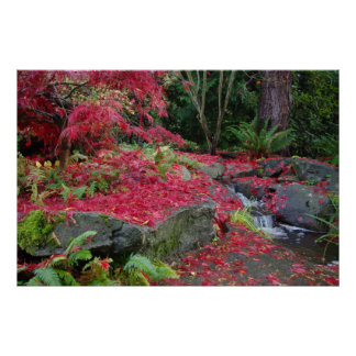 Botanical Garden Autumn Posters