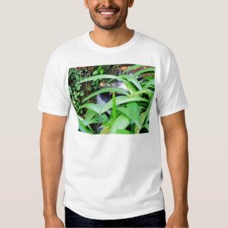 Botanical Garden in Rio Shirt