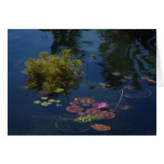 Botanical Garden in South Beach Miami - Card