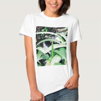 Botanical Garden, Rio Shirt