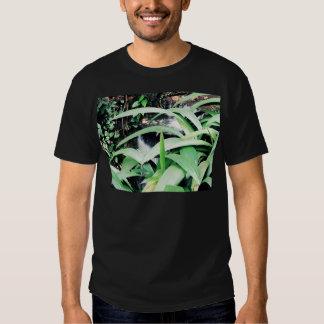 Botanical Garden, Rio T Shirt