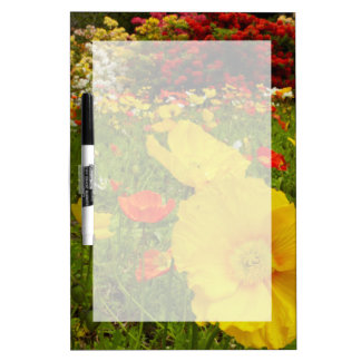 Botanical gardens at Queens Park Dry Erase Board