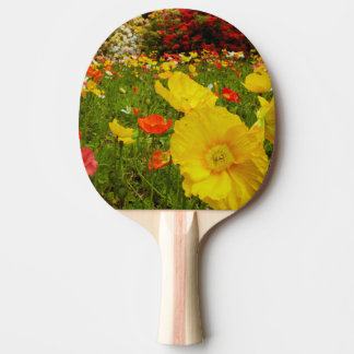 Botanical gardens at Queens Park Ping-Pong Paddle