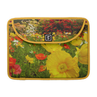 Botanical gardens at Queens Park MacBook Pro Sleeve