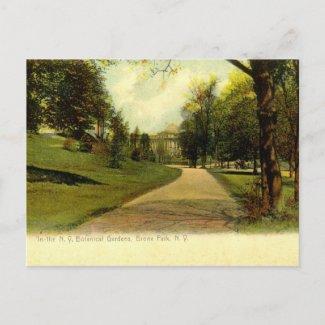 Botanical Gardens, Bronx New York 1905 vintage postcard