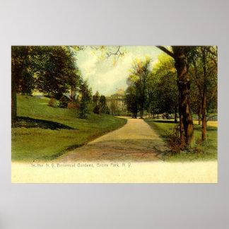 Botanical Gardens, Bronx New York 1905 vintage Print