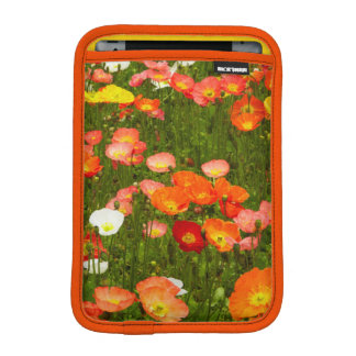 Botanical gardens iPad mini sleeves
