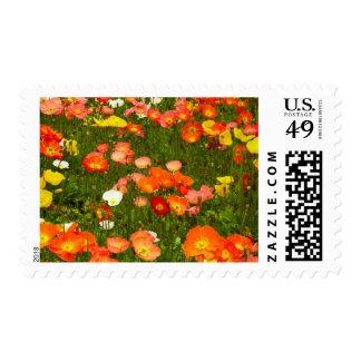 Botanical gardens postage stamps