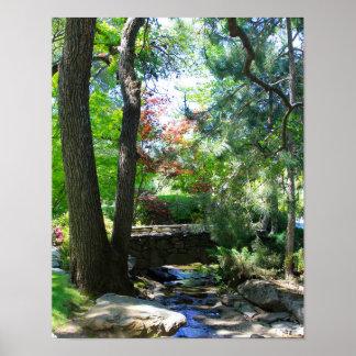 Botanical Gardens, Stream, Footbridge Print