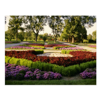 Botanical Gardens, the annuals, Montreal, C Postcard