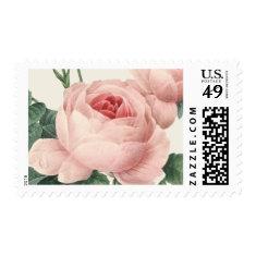 Botanical Glamour | Postage