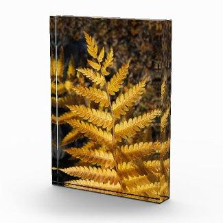 Botanical Golden Fern Autumn Leaf Photo Block