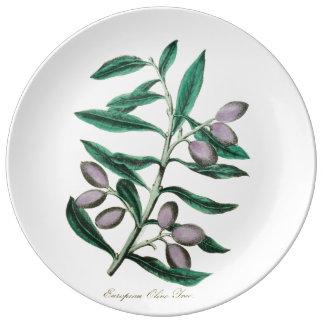 Botanical illustration: European Olive, 1855 Porcelain Plate