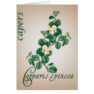 Botanical illustration of Capers blank card
