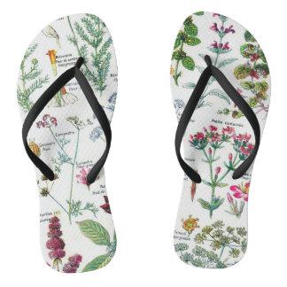 Botanical Illustrations Flip Flops