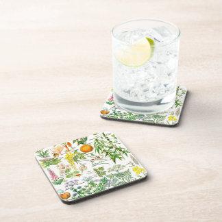 Botanical Illustrations - Larousse Plants Beverage Coaster