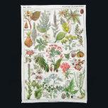 "Botanical Illustrations - Larousse Plants Kitchen Towel<br><div class=""desc"">Botanical Illustrations - Larousse Plants. Please visit my store for more interesting design and more color choice. => zazzle.com/colorfulworld*</div>"