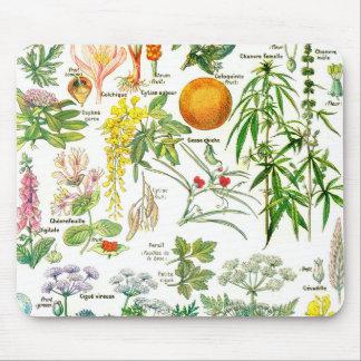 Botanical Illustrations - Larousse Plants Mouse Pad