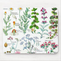 Botanical Illustrations - Larousse Plants Mouse Pad