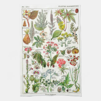 Botanical Illustrations - Larousse Plants Towel