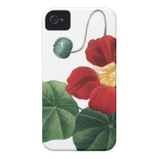BOTANICAL iPhone 4/4S case Nasturtium