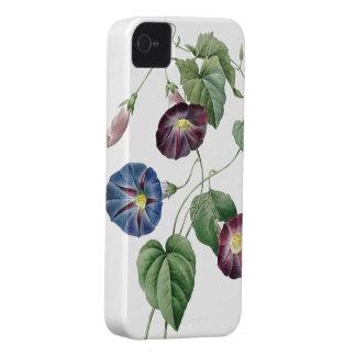 BOTANICAL iPhone 4 case Morning Glory
