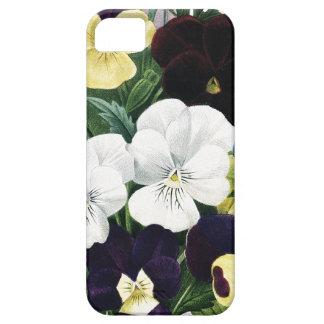 BOTANICAL iPhone 5 case Pansies