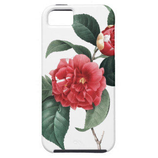 BOTANICAL iPhone 5 case Red Camelia