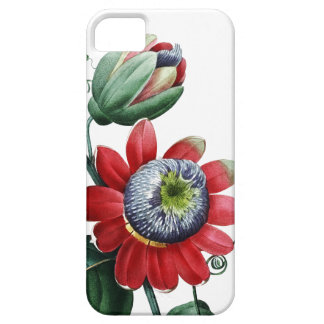 BOTANICAL iPhone 5 case Red Passiflora