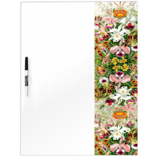 Botanical Orchid Flowers Floral Tropical Dry-Erase Board