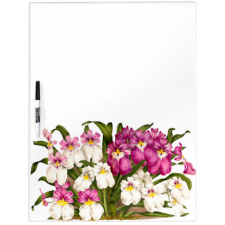 Botanical Orchid Flowers Floral Tropical Dry Erase Board