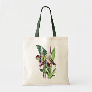 BOTANICAL ORCHID (Paphiopedilum Argus) Tote Bag