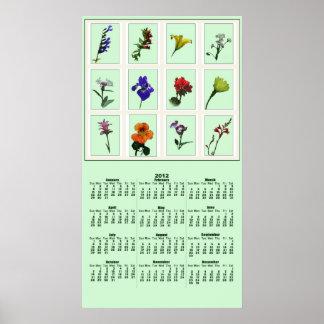 Botanical Photo Sketch 2012 Poster Calendar
