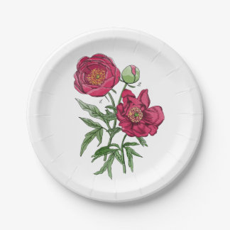 Botanical | Pink Peony flower 7 Inch Paper Plate