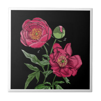 Botanical | Pink Peony flower Small Square Tile