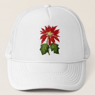 Botanical Poinsettia Cap