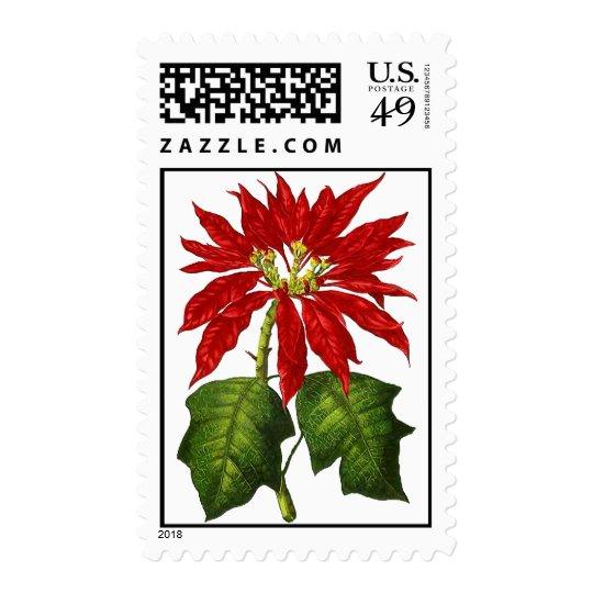Botanical Poinsettia Postage