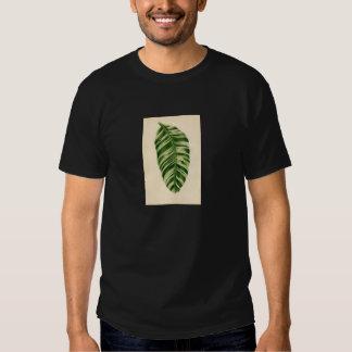 Botanical Print - Banana (musa vittata) T-shirt