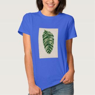 Botanical Print - Banana (musa vittata) Tee Shirt